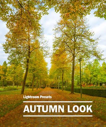 Cover - Autumn Look